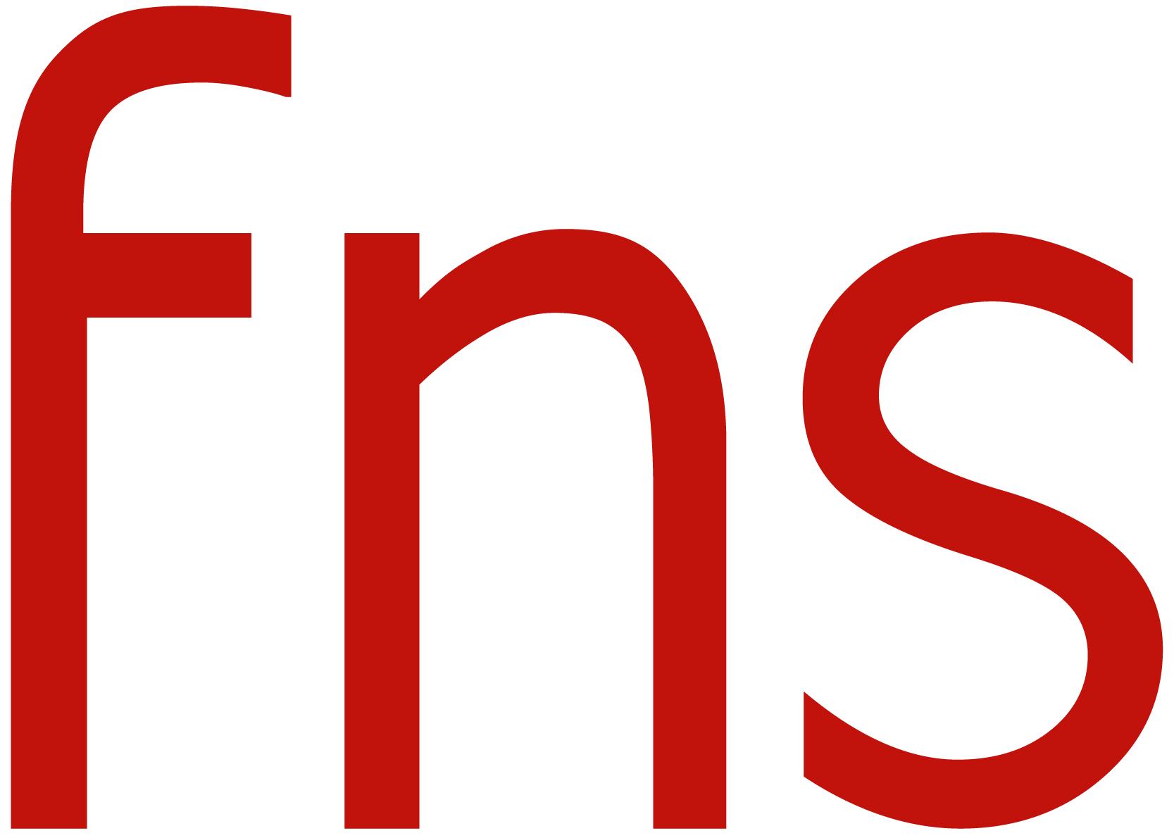 Finnish Net Solutions logo