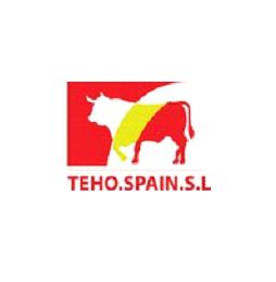Teho Spain S.L. logo