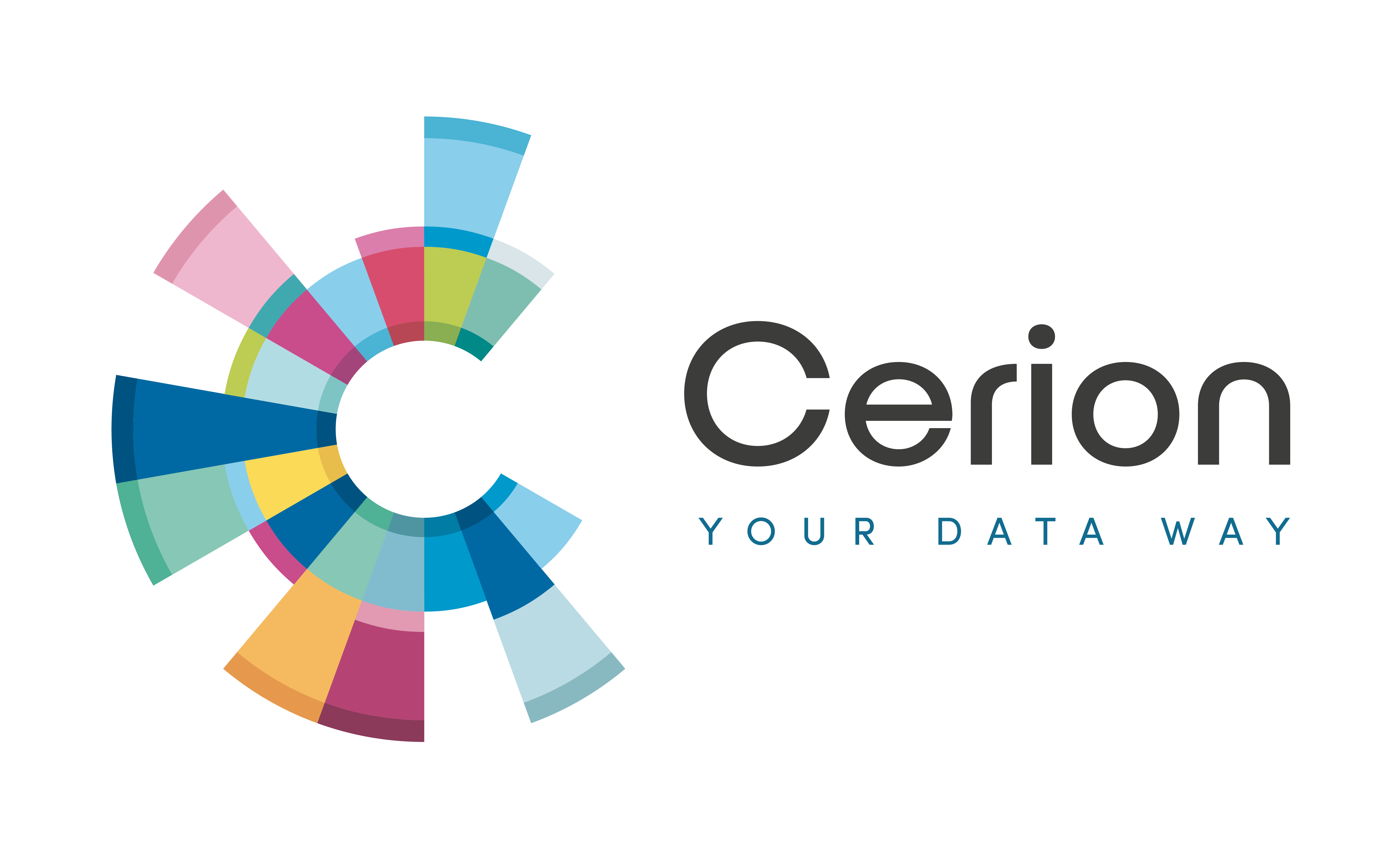 cerion-sap-ratkaisukonsultteja-turku-sdsuu-3302383 logo